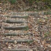 Fall Stairs Art Print