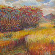 Fall Sumac Fields Art Print