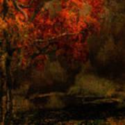 Fall Woods Art Print