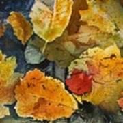 Fallen Print by Elizabeth Carr