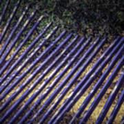 Fallen Fence Art Print