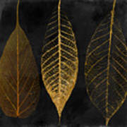 Fallen Gold II Autumn Leaves Art Print