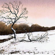 Fallen Tree Stainland Art Print