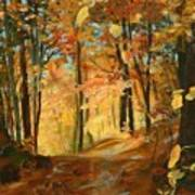 Fall's Radiance In Quebec Art Print