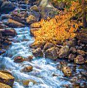 Fall's Rush To South Lake Art Print