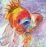 Fancy Fish Art Print