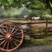 Farm - Horse - Grey Mare Art Print