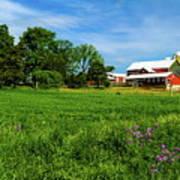 Farm In Summer Art Print