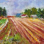 Farm Rows Art Print