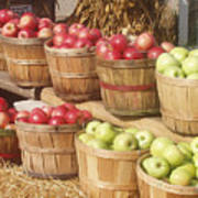Farmer's Market Apples Art Print