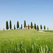 Farmhouse With Cypress Trees And Crops In Tuscany Art Print