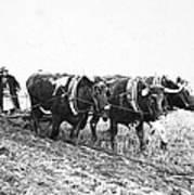 Farming: Ploughing, C1930 Art Print