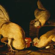 Farmyard Fowls Art Print