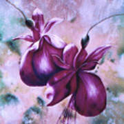 Fat Fuchsia Art Print
