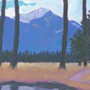 Faust Pond Art Print