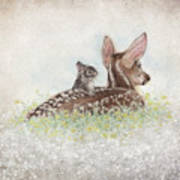 Fawn And Bunny Art Print
