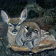 Fawn And Cat Art Print