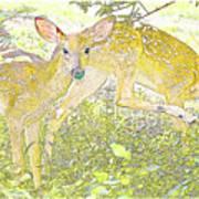 Fawn Twins Digital Painting Art Print
