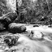 Feather Falls Stream Art Print
