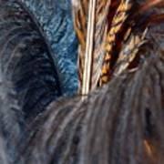 Feather Fun Art Print