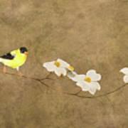 Feathers And Petals I Art Print