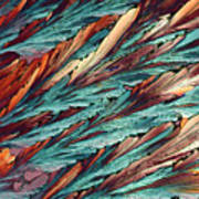 Feathers Of Crystal 2 Art Print
