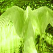 Feathers Of Light - Green Art Print
