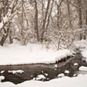 February Snow Art Print