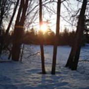 February Sunrise Alongside A Tree Art Print
