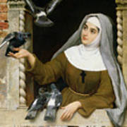 Feeding The Pigeons Art Print by Eugen von Blaas