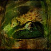 Feeling Froggy Art Print