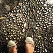 Feet Around The World #32 Art Print