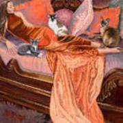 Feline Fashion Harem Art Print