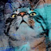 Feline Focus Art Print