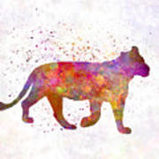 Female Lion 01 In Watercolor Art Print