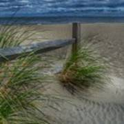 Fence And Dune Grass Art Print