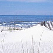 Fence On The Beach, Gulf Of Mexico, St Art Print