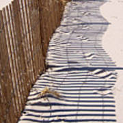Fence Shadow Art Print