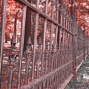 Fenced In Red Art Print