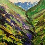 Fertile Valley Art Print