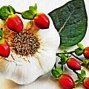 Festive Garlic Art Print