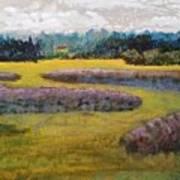 Fiddlers Ridge Marsh Art Print