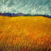 Field At Noon Art Print