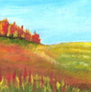 Field In Autumn Art Print