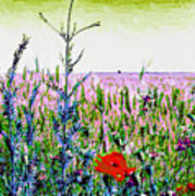 Field Notes Art Print