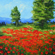 Field Of Poppies IIi Art Print