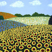 Field Of Sunflowers Art Print