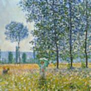 Fields In Spring, 1887 Art Print