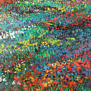 Fields Of Color Art Print