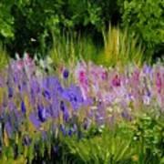 Fields of Purple Art Print